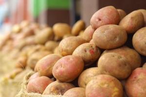 potato-1529747_960_720