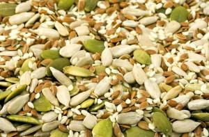 seed-1716_960_720